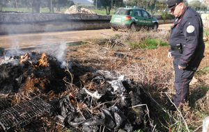 Brucia teli di plastica in un terreno di Restinco: denunciato operaio di un'azienda agricola
