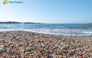 Il paradiso esiste ed è a due passi da noi: a Torre Guaceto una spiaggia fatta di conchiglie