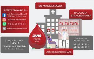 Carenza sangue, Avis organizza due raccolte straordinarie al Di Summa. La prima è per sabato 30 dalle 8.30 alle 12