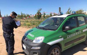 Sbancamenti abusivi di spiaggia: i Carabinieri Forestali intervengono sul litorale di Torchiarolo