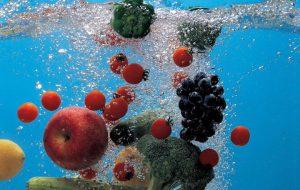 L'acqua contenuta nei vegetali può bastare per tutte le funzioni biologiche? Di Rocco Palmisano
