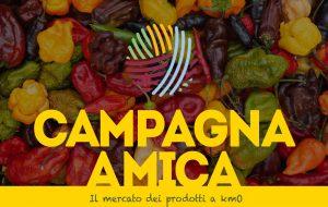 Da giovedì 28 maggio in Piazza Umberto I torna il Mercato di Campagna Amica