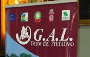 """Gal Terre del Primitivo: giovedi 4 webinar di presentazione del bando """"Investimenti nella trasformazione, commercializzazione e sviluppo della produzione tipica locale"""""""