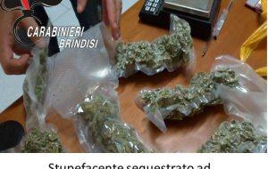 Spaccio di erba: i Carabinieri sequestrano 1,4 Kg tra Oria e Mesagne