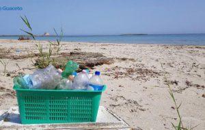 A mano, a mano per Torre Guaceto: torna la pulizia di comunità
