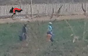 Controlli anti–caporalato: i Carabinieri arrestano padre e figlio