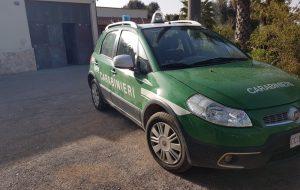 I Carabinieri Forestali sequestrano scarico di autolavaggio
