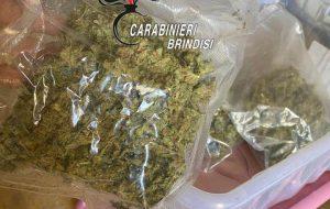 12,5 Kg di cannabis illegale coltivati in azienda agricola: arrestato imprenditore 59enne