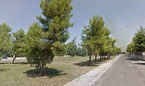 Francavilla: nuova vita per il Parco Caniglia