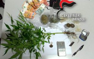 Sorpresi con una pianta e 4 semi di canapa indiana, 1,9 grammi di hashish e 75,41 grammi di marijuana