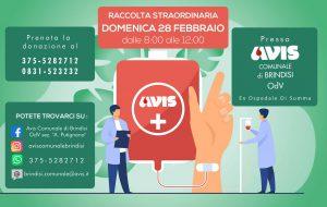 Avis Brindisi: domenica 28 e mercoledì 3 raccolta sangue presso l'ex ospedale Di Summa