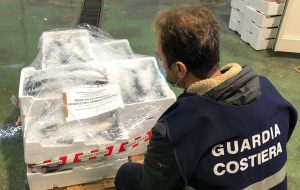 La Guardia Costiera sequestra 100 kg. di cefali