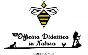 Arriva un'associazione che pone le api al centro dell'educazione e della sostenibilità ambientale