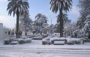 Scende la neve in Valle d'Itria: paesaggi da fiaba a Cisternino, Ostuni, Fasano e Ceglie Messapica
