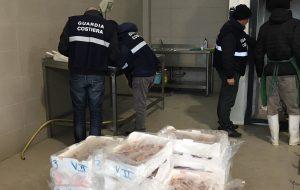 Pesca illegale: grande impegno della Guardia Costiera di Brindisi
