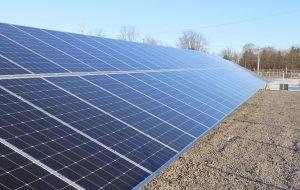 I Verdi contro il megaimpianto fotovoltaico tra le campagne delle province di Brindisi e Lecce
