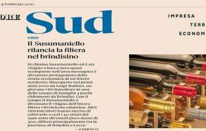 """Il Susumaniello di Brindisi guadagna la prima pagina del """"Rapporto Sud"""" del Sole 24 Ore: è una eccellenza del meridione"""