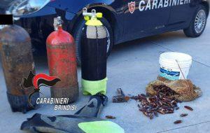 Pescano 7 Kg. di datteri di mare: arrestati due uomini