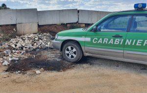 Terreno agricolo ridotto a discarica con il placet del proprietario: intervengono i Carabinieri Forestali