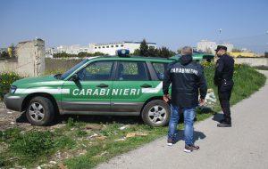 Motocarro con carico abusivo di rifiuti speciali fermato dai Forestali: denunciato l'autista