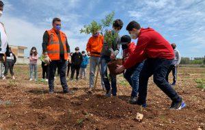 Piantumazione di alberi alla presenza del Consiglio Comunale dei Ragazzi di San Vito dei Normanni