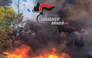 Incendia rifiuti pericolosi speciali nel suo terreno: denunciata
