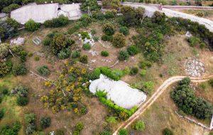 Oasi botanica della Selva: al via il progetto di recupero