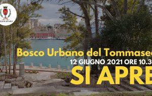 Apre il Bosco urbano del Tommaseo