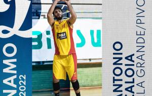 Antonio Caloia è il primo colpo di mercato della Dinamo Basket Brindisi