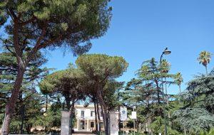 Quale futuro per il verde pubblico a San Vito dei Normanni?