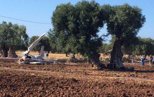 Ultraleggero precipita nelle campagne di Fasano: morti due giovani