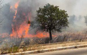 Grosso incendio nella zona industriale di San Vito dei Normanni