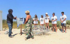 Sbarca a Torre Guaceto PatrioTurtle: la tartaruga che protegge gli animali marini dalla plastica