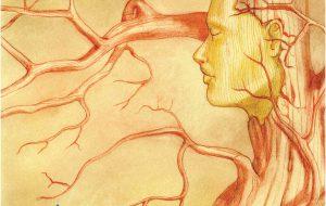 """In uscita """"Calìmi"""", il nuovo libro di poesie di Pierpaolo Petrosillo. Di Marco Greco"""